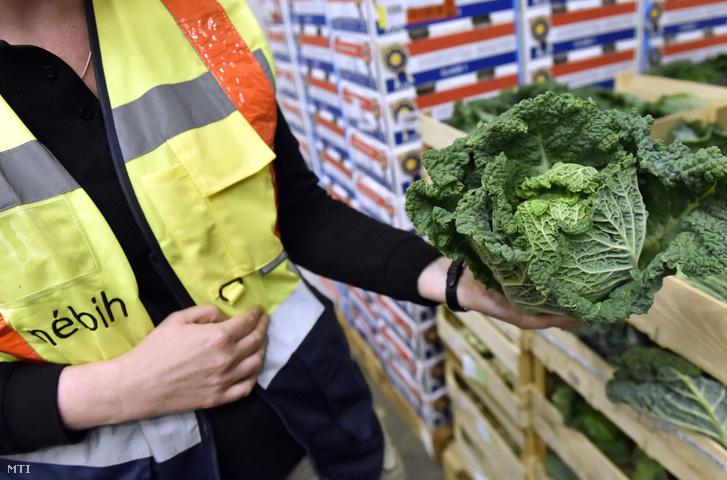 A Nébih munkatársai egy külföldi szállítmányt ellenőriznek az élelmiszerhamisítás elleni OPSON VI. nemzetközi művelet keretében a Budapesti Nagybani Piacon 2017. május 17-én.