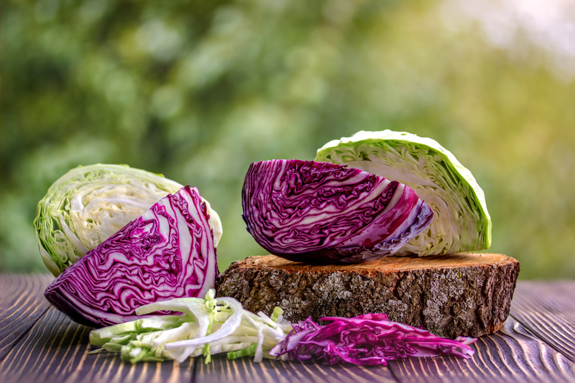 A káposztában, mint minden keresztesvirágzatú zöldségben, polifenol és klorofill van, mely csökkenti a petefészek- és mellrák kialakulásának kockázatát. Kéntartalmú vegyülete, a glükozinolát olyan enzim termelésére serkenti a májat, mely fellép a rákos sejtek ellen.