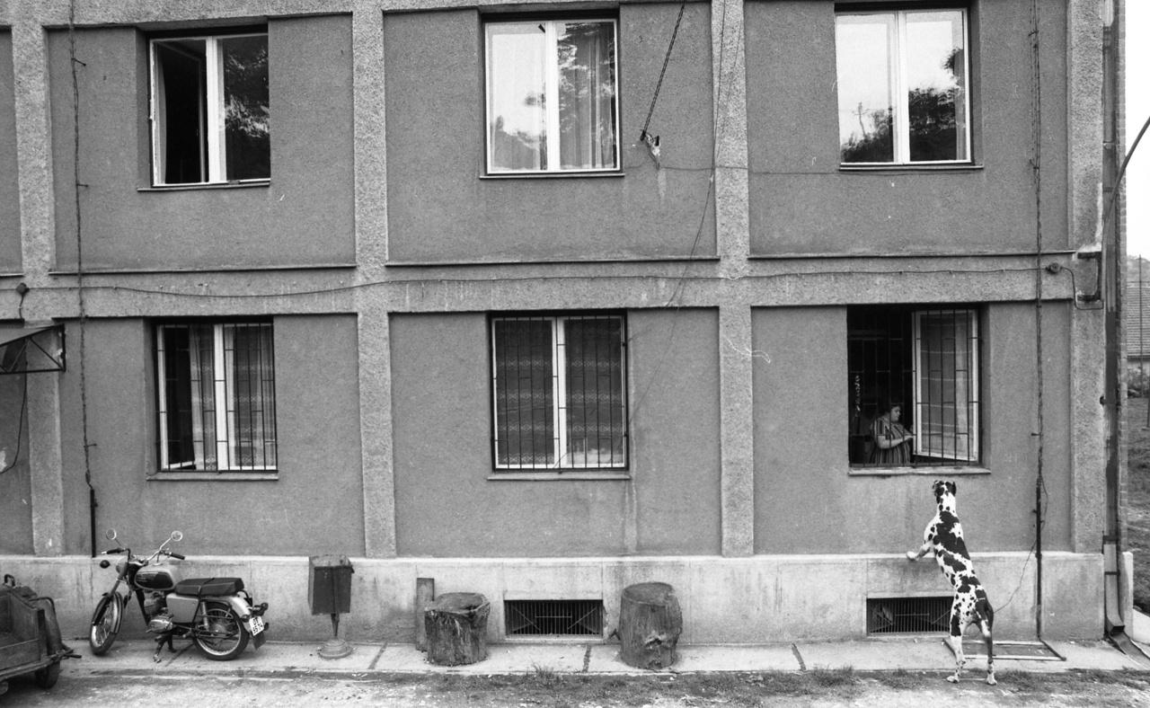 A hetvenes és a nyolcvanas években rengeteg házgyári panelház épült Magyarországon. A 1970-es évek elején több mint 1700 település önállóságát szüntették meg, termelőszövetkezeteket és iskolákat vontak össze, a fiatalok pedig a munkahelyek miatt városokba költöztek. A városi, lakótelepi lét kitermelte a maga kis bandáit, ahol nagyot lehetett villantani már egy segédmotoros kerékpárral is, nemhogy egy rendes, komoly motorral. A telepen pedig hétvégente mehetett a mosás, a króm alkatrészek pucolása, a gyertyacsere és a karburátor állítgatása.