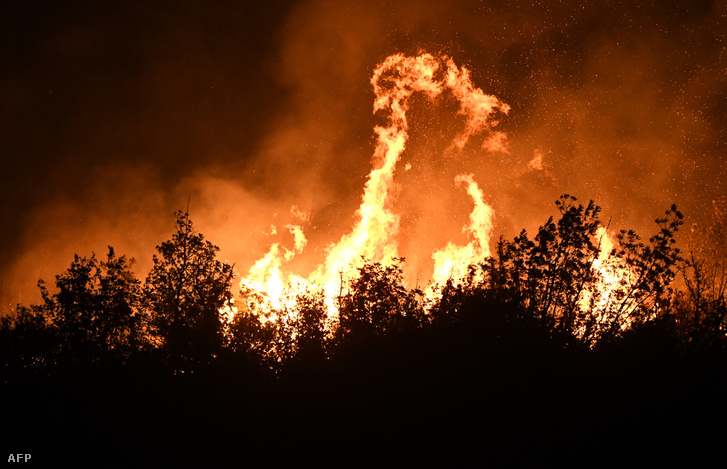 Lángol az erdő a Zadar közelében lévő Polaca falunál 2017. augusztus 21-én