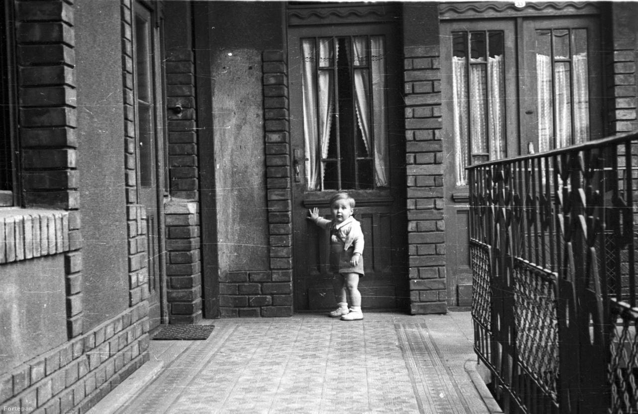 Szántó András, gasztronómiai szakíró: Gyermekkorom helyszíneEz a kép a Papnövelde utca 8-ban készült – itt, az első emeleten lakott a családunk 40 éven át, én magam csaknem 15 évig. Alattunk a félemeleten a Helikon kiadó helyiségei voltak, a postás gyakran tévesen dobta be a leveleinket Szántó Tibornak, a Helikon vezetőjének és nekem. Így gyakran találkozhattam vele, amikor a leveleket visszacseréltük.                          Nem tudom, ki a képen látható kisgyerek, de akár én is lehettem volna, mivel ez az első emeleti lakás, ahol mi is laktunk, amikor én 5-6 éves voltam. A lábtörlő a konyha ajtaja előtt van, mögötte tartotta a nagymamám az élő csirkét, amit a Nagycsarnokban vásárolt. Ott élt és hízott a csirke egészen addig, amíg le nem vágta – akkor megettük.                         A jobboldali ajtó a szomszéd lakásba vezetett, ahol a lakókat (nagyon kedves embereket) 1956-ban két tizenéves, fegyveres suhanc kiirtotta és a lakást is felgyújtották – majdnem leégett az egész ház. Szörnyű élmények egy kisgyereknek.