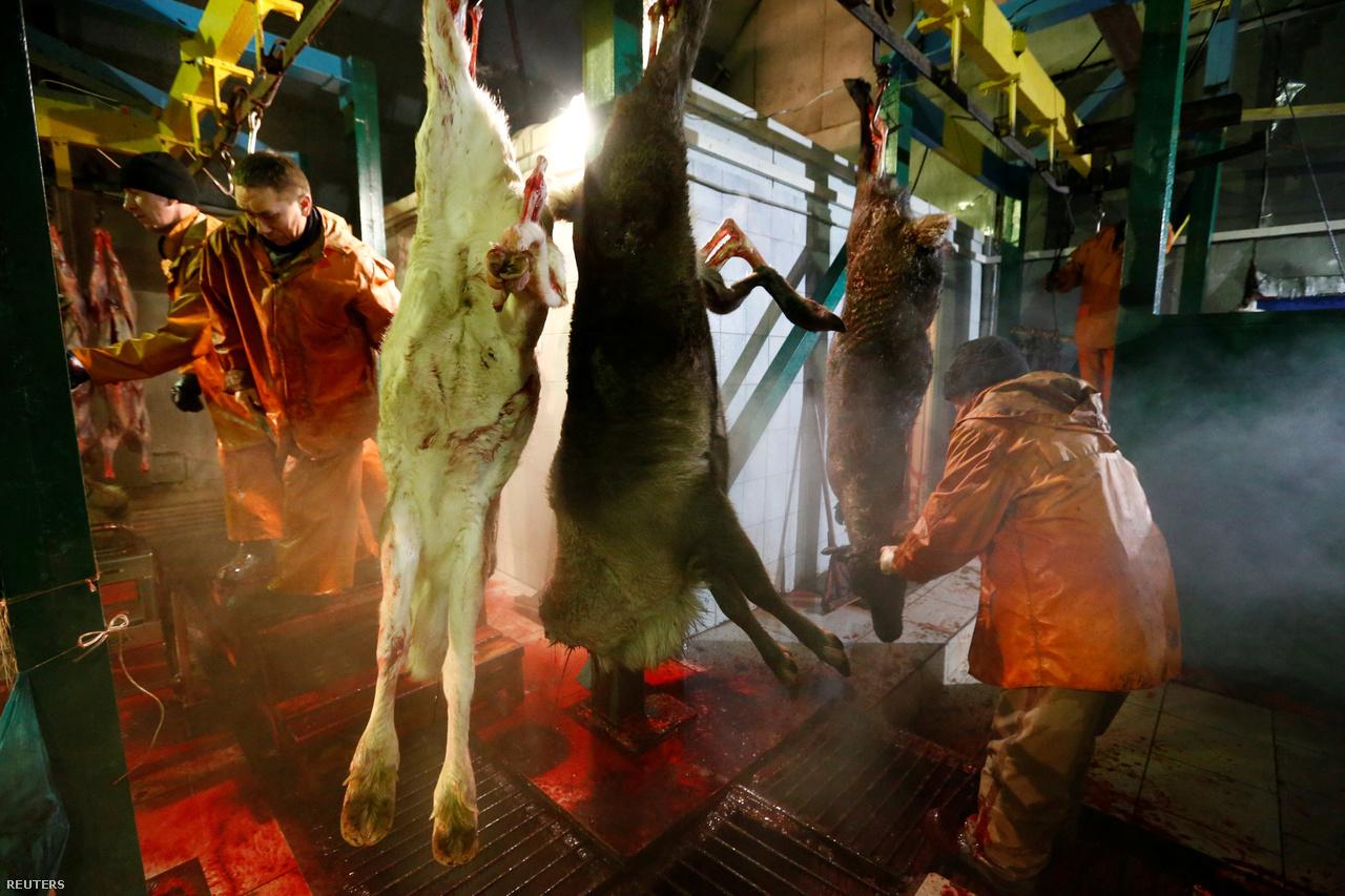 A húsfeldolgozás gazdasági jelentősége eltörpül a gázipar mellett. A sarkkörön túli városok sem roskadoznak az olcsó szarvashústól. Inkább ott is szezonálisan a rénszarvasterelők érkezősekor a piacokon lehet venni szarvashúst, bár ipari feldolgozása is létezik. Húsa nem különösebben drága, kilója 2000 forint alatti összegért is van, a szarvasnyelv pedig legfeljebb 3500 forintnak felel meg.