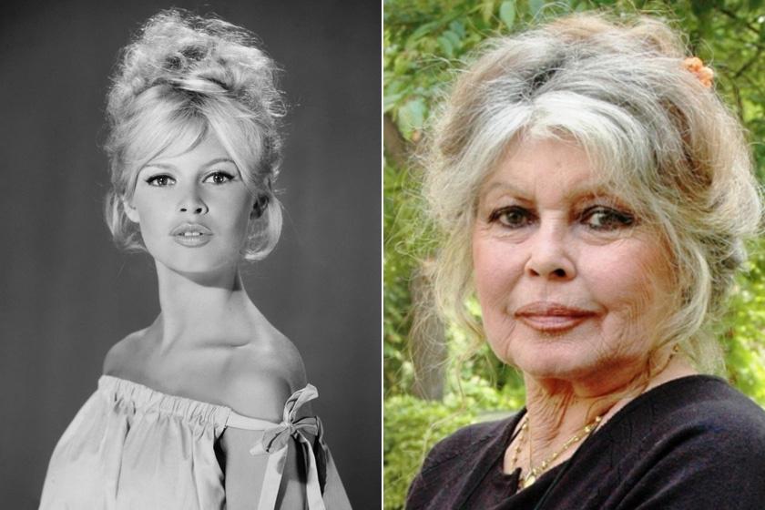 Az Egy párizsi lány című film főszereplőnője, Brigitte Bardot már 82 éves. Unokája, Anne Charrier is örökölte a színészkedés iránti szerelmét: ő is szép karriert futott be a filmiparban.