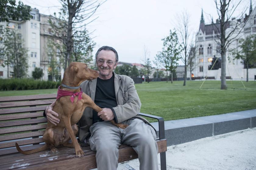 """""""Úgy szól a mondás: van a kutya, és van a vizsla"""" - mondja Szacsvay László, akinek már több vizslája is volt. Fülöp nevű kutyája 2014 óta a társa."""