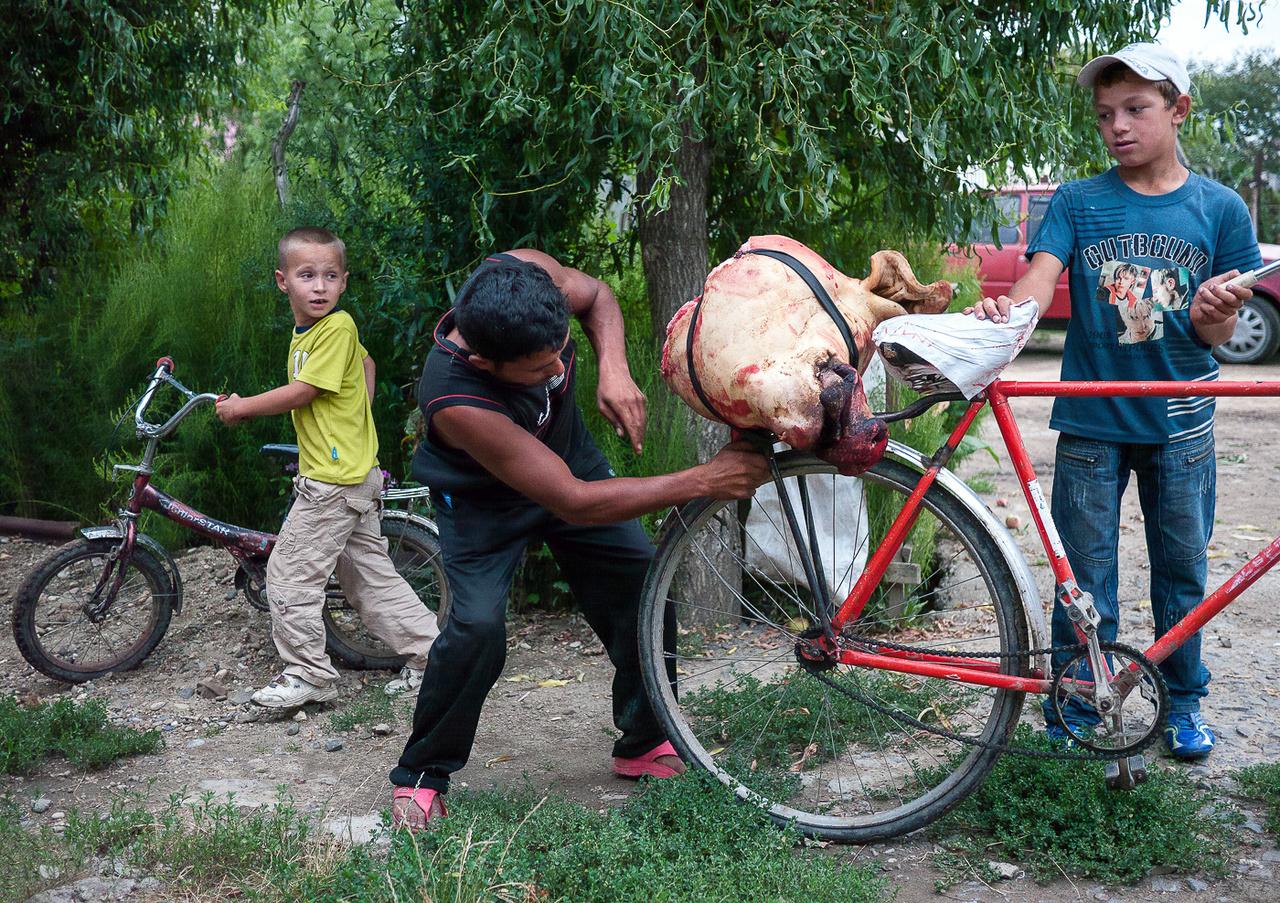 Sertés fej szállítása biciklin, Nagydobrony