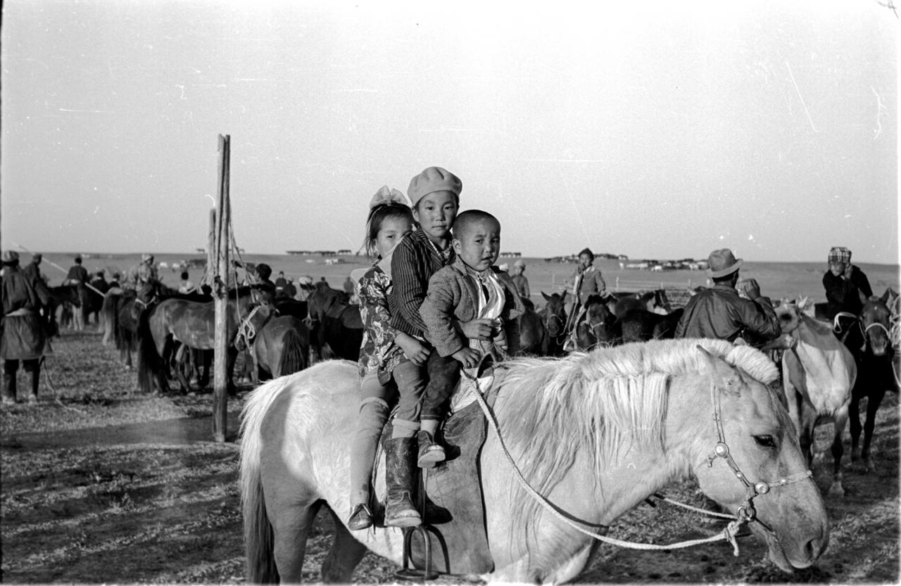 Félvad lovak befogása. A ló több, mint egyszerű haszonállat, a ló minden, a mongolok lelkierejének, virágzásának is kifejezője. Ha így van, a szocializmusban különösen kitartó lovakra volt szükség: az itteni sztálinista terror alatt 1937-38-ban ezer kolostort és más buddhista szent helyet romboltak le, a hagyományos szellemi vezetőket, befolyásos lámákat legyilkolták.
