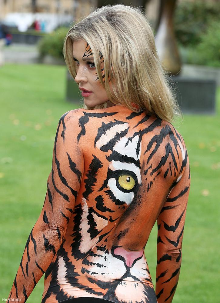 A bohócokkal és a tűznyelőkkel nincs gond, de például a tigriseket hagyják békén.