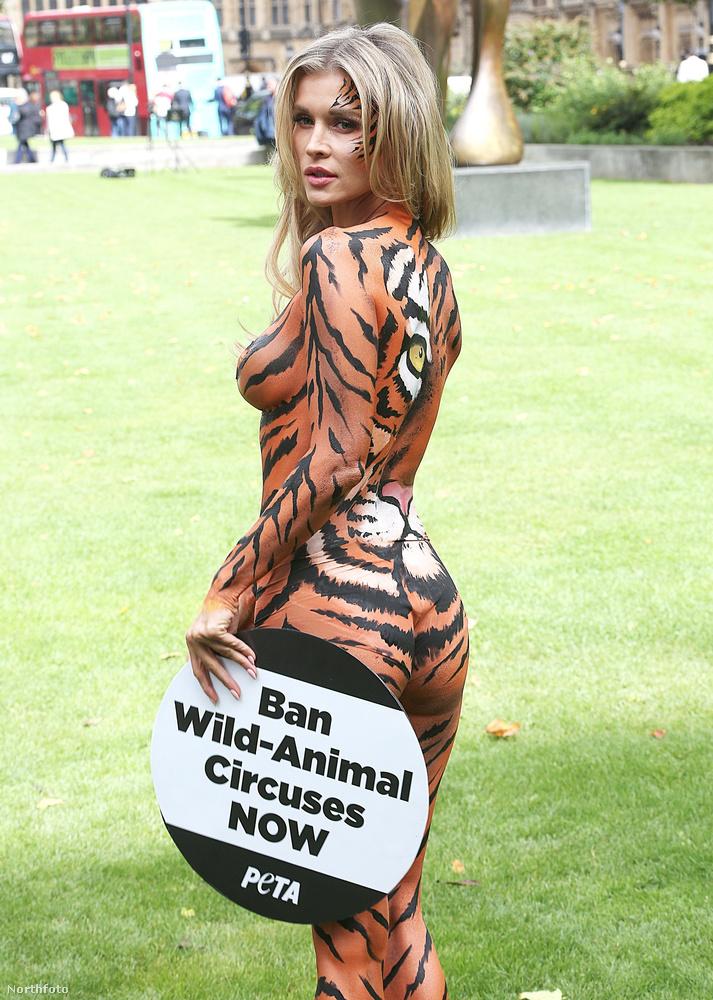 Tiltsák be a vadon élő állatokat foglalkoztató cirkuszokat most! - olvasható a tábláján.