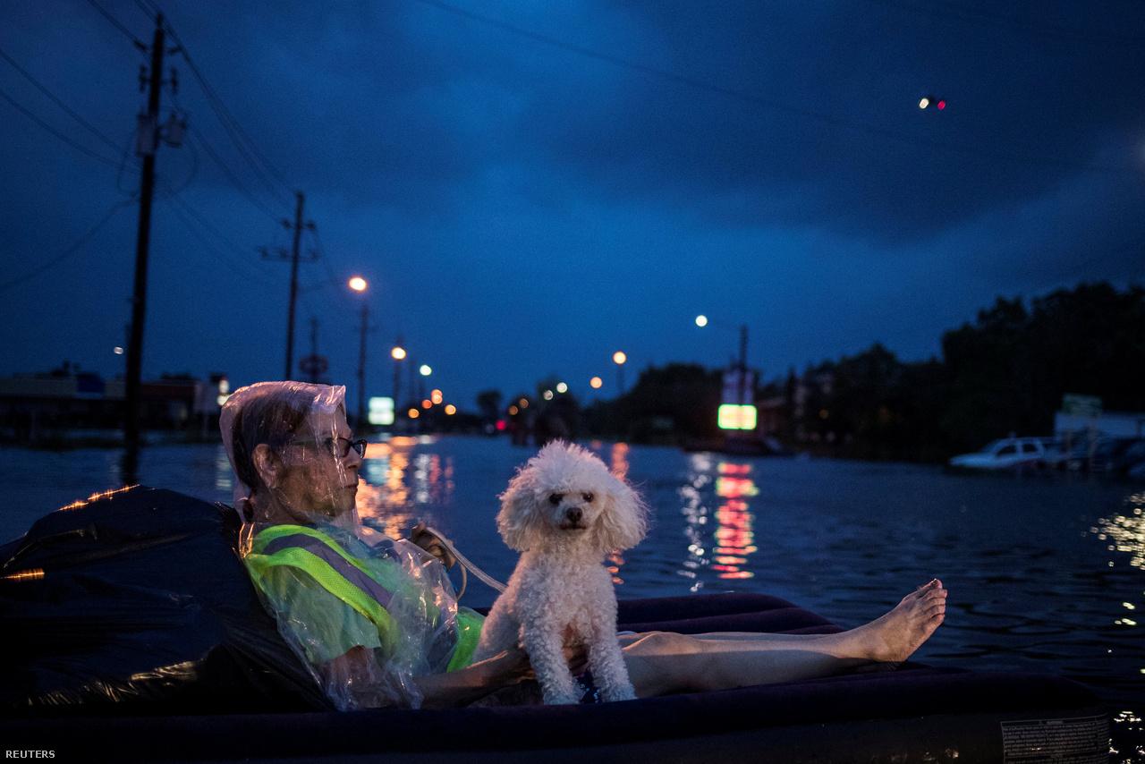 Az Irmát megelőzően a Floridát elérő legerősebb hurrikán, az Andrew 1992-ben olyan pusztítást végzett, hogy Homestead város újjáépítéséhez végül 8 évre volt szükség.