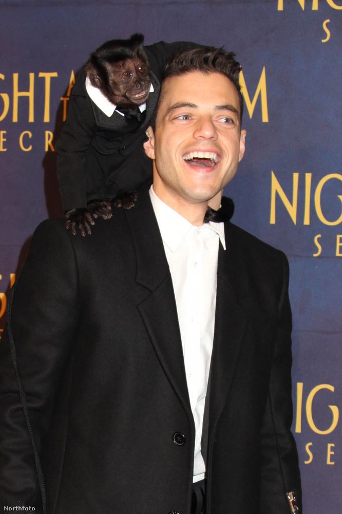 Szóval az ilyen kevéssé ismert sorozatok után szerepet kapott az Éjszaka a múzeumban-filmekben (ezért ül a vállán egy majom), majd jött a 24, és még több sorozat