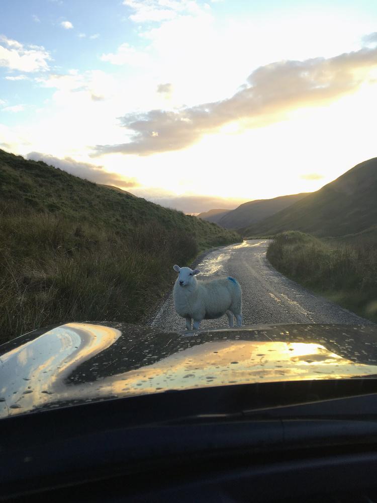 Ez volt Nyugat-Wales