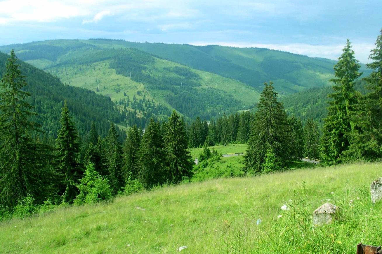 hargita hegy