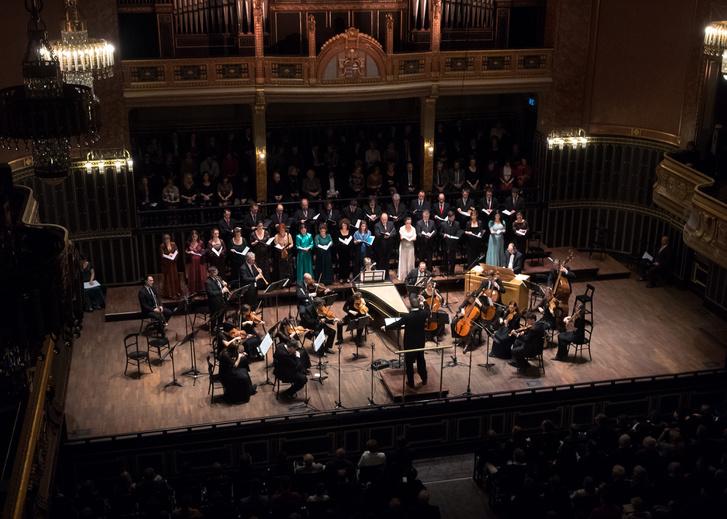 Vashegyi-Purcell-Orfeo-foto-Zeneakademia-Benko-Sandor