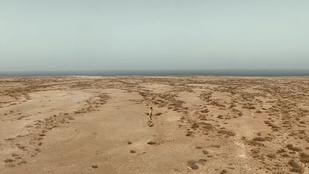 Ez a poszt úgy kezdődik, hogy egy pucér férfi fut a sivatagban