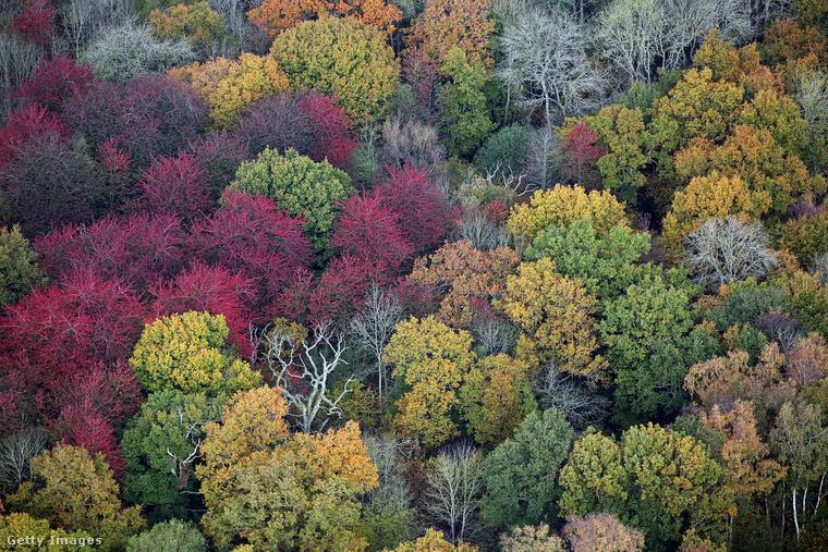 Persze az egész angol vidék csodás színekben pompázik ilyenkor
