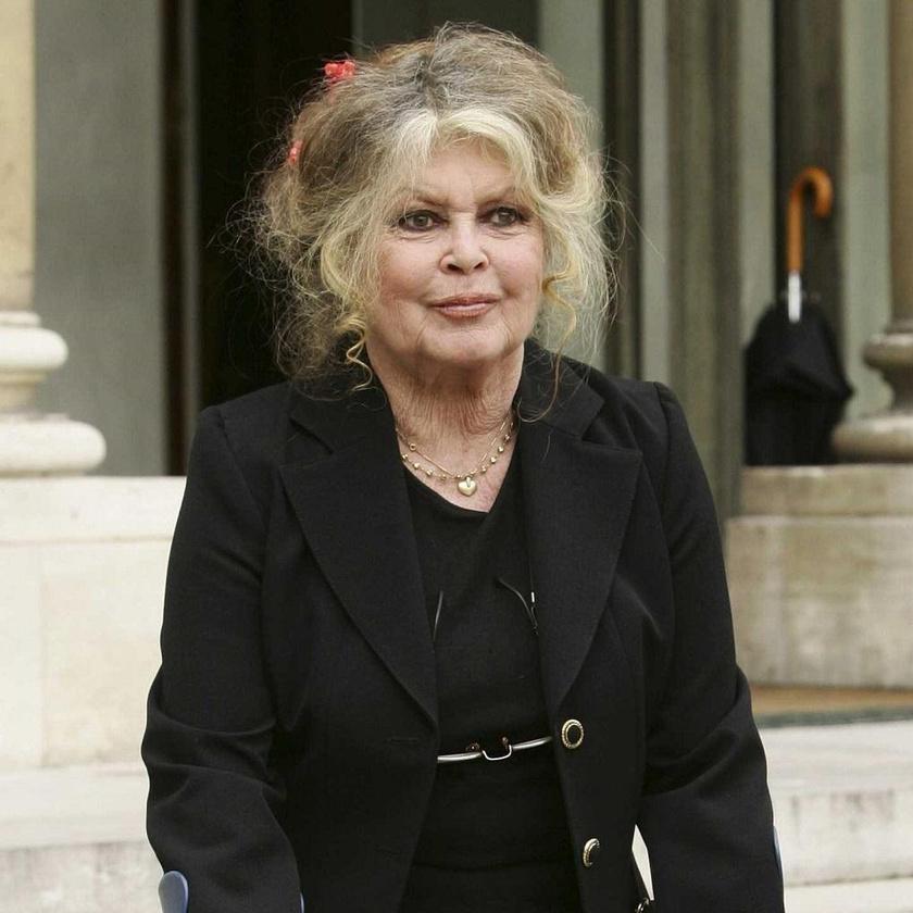 Brigitte Bardot képes volt méltósággal megöregedni: nem szabatta szét az arcát csak azért, hogy néhány évvel fiatalabbnak tűnjön.