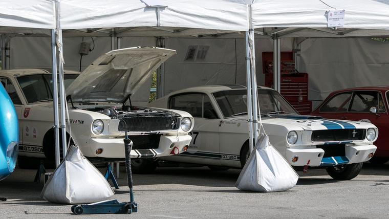 A sátor rejtekében két Mustang egymás mellett