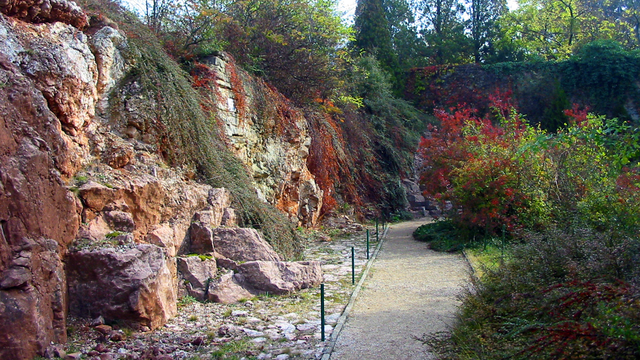 geologiai