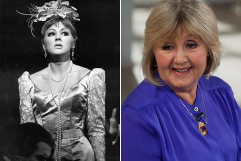 Halász Judit már főiskolás korában pesti színpadokon szerepelt, majd 1965-ben a legendás rendező, Várkonyi Zoltán hívta a Vígszínházhoz, amelynek azóta hűséges tagja. Fiatalkorában cserfes, helyes, értelmes, öniróniával is rendelkező lányokat játszott.