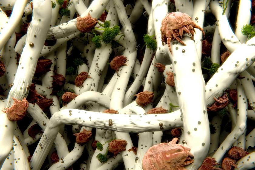 Poratkák a textilszálak között