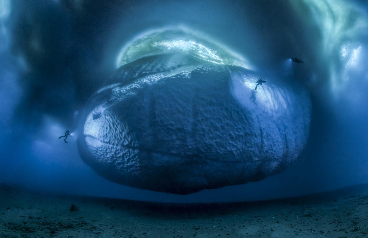 Jégszörnyeteg - egy csapat búvár vizsgál egy vízalatti jéghegyet az Antarktisz jeges vizében.