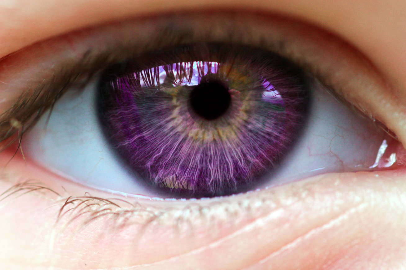 lila-szem
