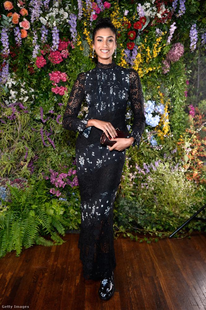 A 21 éves holland modell, Iman Hamman a H&M x Erdem kollekció egyik legdrágább ruháját választotta az alkalomra.
