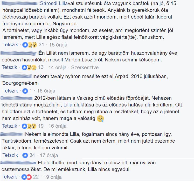 Sárosdi Lilla mellett rengetegen kiálltak a Facebookon.