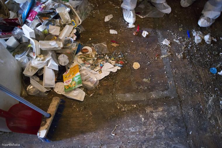 Amikor egy év koszolódás és gyűjtögetés után megjönnek újra a takarítók, ilyen látvány fogadja őket.