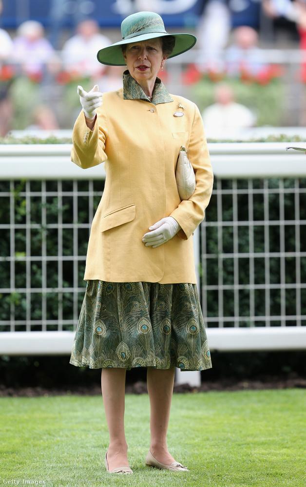 Anna hercegnő hivatalos brit címe Princess Royal, amit az uralkodó legidősebb lánya visel, jelenleg ő a hetedik személy, aki ezt a címet megkapta