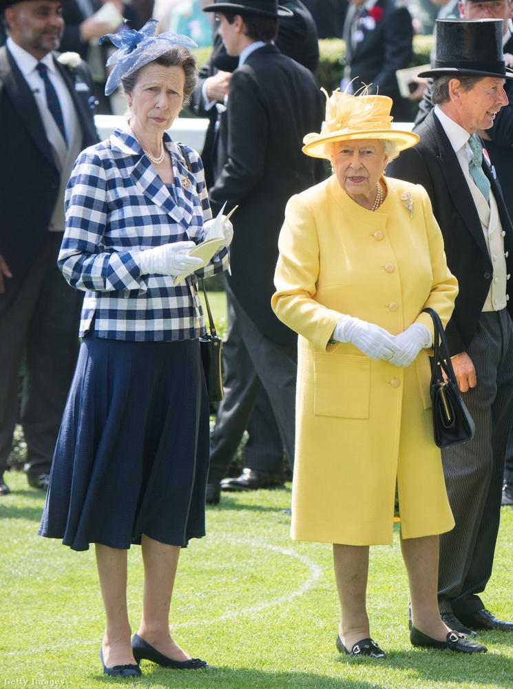 Anna hercegnő nemcsak több száz rendezvényen vesz részt évente, de több mint 200 jótékony szervezet védnöke is.