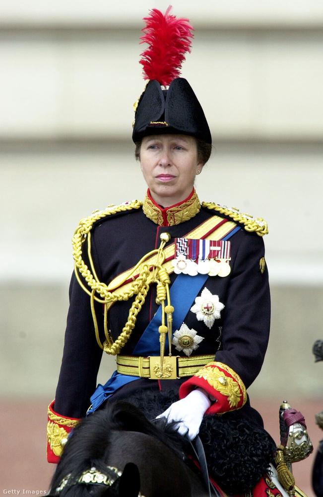 A brit királyi család rangidős tagjaihoz hasonlóan Anna hercegnő is a Brit Nemzetközösség országai fegyveres erejének tiszteletbeli tagja.