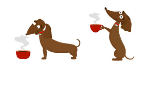 Végre van külön kutyáknak készített kávé!