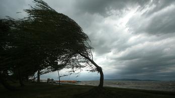 Országszerte több megyében is fákat döntött ki a szélvihar