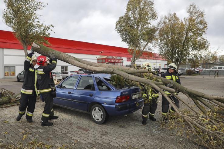 Autóra dőlt fát távolítanak el tűzoltók egy áruház parkolójában Szentendrén 2017. október 29-én.