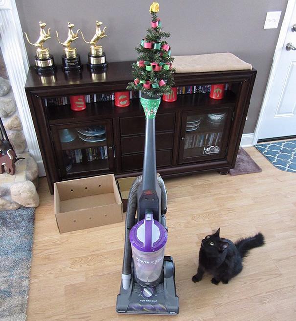 A porszívó az ördög teremtménye a macskák szemében. Ha karácsonyozni akarsz, hívd segítségül.