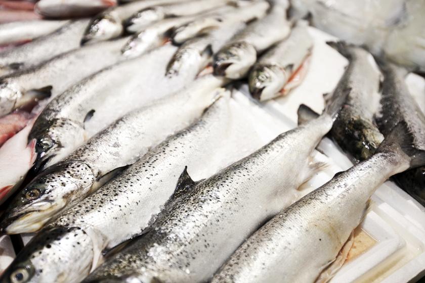 Okinawán az emberek 80%-os telítettségnél abbahagyják az evést. Így kevesebb kalória jut a szervezetbe. Alap élelmiszer a barna rizs és a tengeri hal.