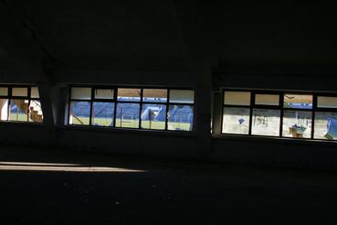 Scornicesti focipályáján teljes a pusztulat