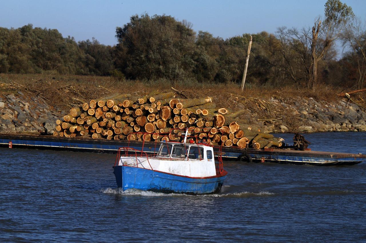 A halászat és az állattartás mértéke eltörpül a legjobban húzó iparág mellett. A fakitermelés a legjövedelmezőbb biznisz errefelé, ha a csempészetet szem számoljuk