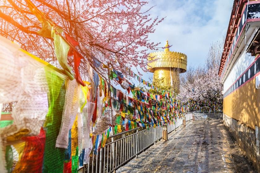 buddhista nagy nap