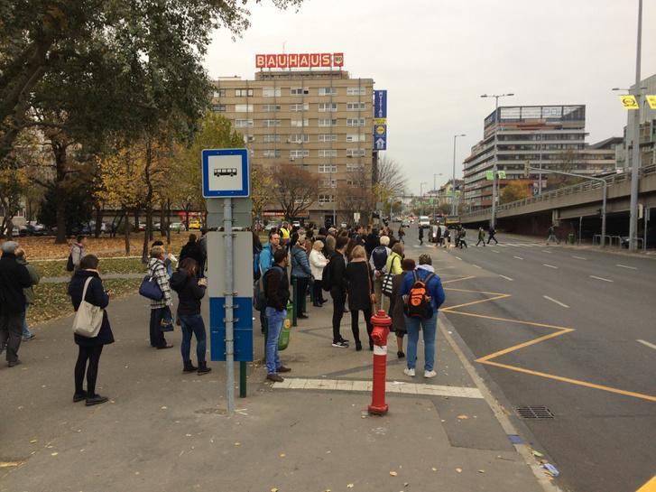 Amikor már vagy 2 perce nem jön busz az Árpád hídnál (Kelemen Tamás/Közlekedő Tömeg)