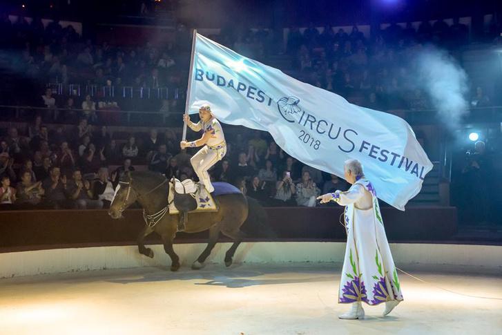Lovasartista a Budapesti Cirkuszfesztivál zászlajával