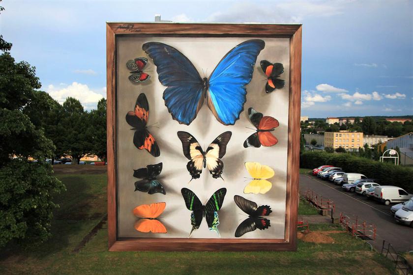 A művész 1987-ben Franciaországban született, és autodidakta módon tanult meg festeni.