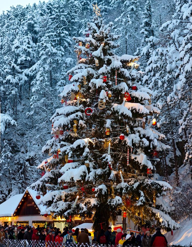 A Johannesbachklamm szurdok vásárban a fő attrakció: Ausztria legnagyobb karácsonyfája óriás gyertyákkal, gömbökkel, szaloncukrokkal díszítve