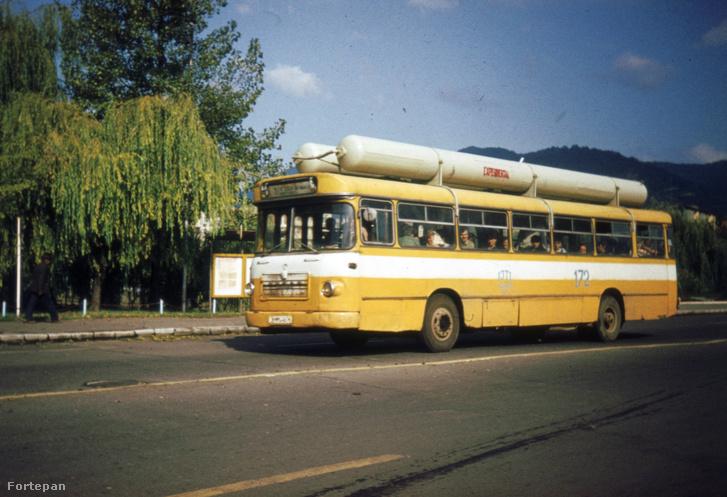 1980, Nagybánya, Románia