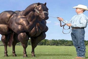 Kigyúrt lovakat szeretnék
