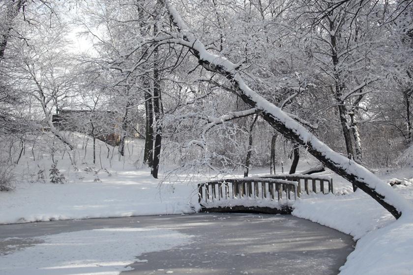 Télen is mesébe illik az Óvárosban a tatabányai Népház liget hidacskája.