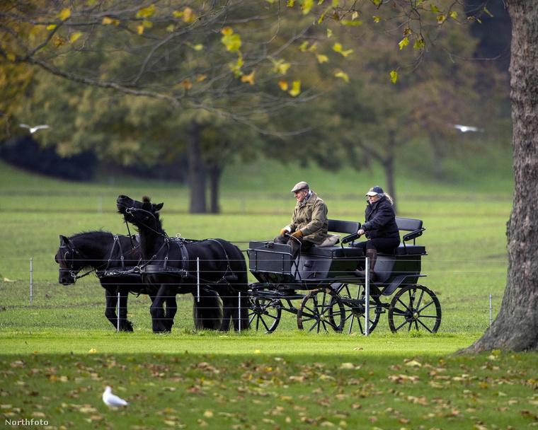 Fülöpöt ugyanis a Windsorok magánparkjában, a Temze parton kocsikázva látták a fotósok.