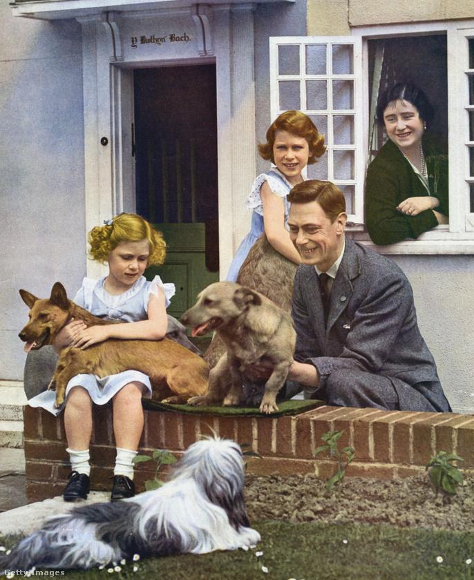 Ez pedig már egy családi idill, 1937-ből: Margit hercegnő, a királynő húga kutyával az ölében, maga Erzsébet állva látható a képen, amely az Y Bwthyn Bach nevű házikó előtt örökíti meg őket (a ház Windsorban áll, itt megnézhetik).A hercegnők édesanyja, Elizabeth Bowes-Lyon az ablakból mosolyog, míg az itt enyhén David Bowie-ra emlékeztető VI