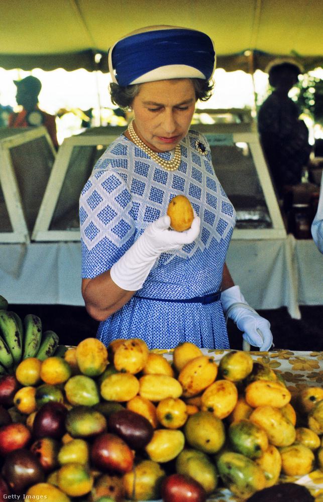 1977: nahát, egy mangó! A Virgin-szigeteken folytatott látogatásán figyelte meg.